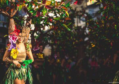 Desfile-carnavalmoral-2015-238