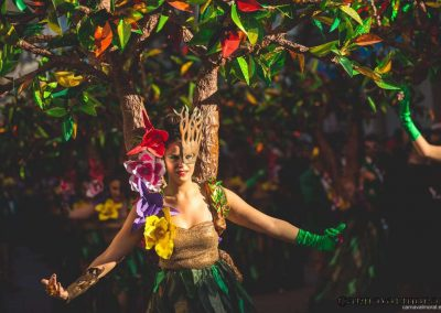 Desfile-carnavalmoral-2015-240