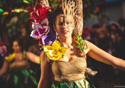 Desfile-carnavalmoral-2015-243