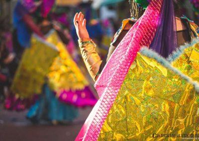Desfile-carnavalmoral-2015-255
