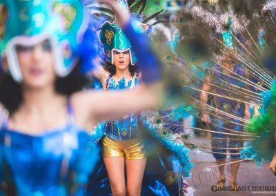 Desfile-carnavalmoral-2015-286