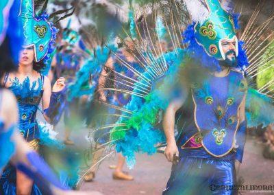 Desfile-carnavalmoral-2015-287