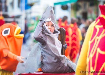 Desfile-carnavalmoral-2015-301