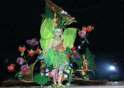carnavalmoral-gala-2010-003