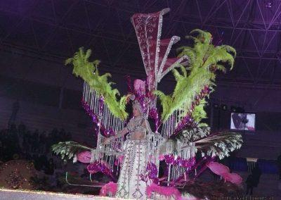 carnavalmoral-gala-2011-042