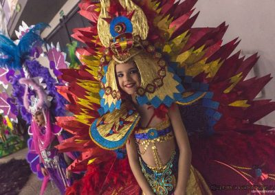 carnavalmoral-gala-2017-005