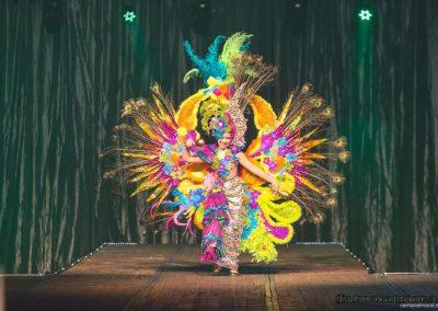 carnavalmoral-gala-2017-033