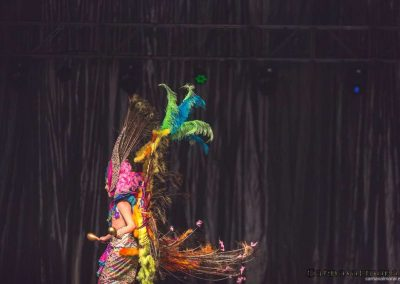 carnavalmoral-gala-2017-034