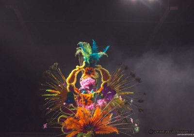 carnavalmoral-gala-2017-038