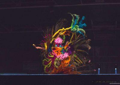 carnavalmoral-gala-2017-049