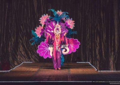 carnavalmoral-gala-2017-053