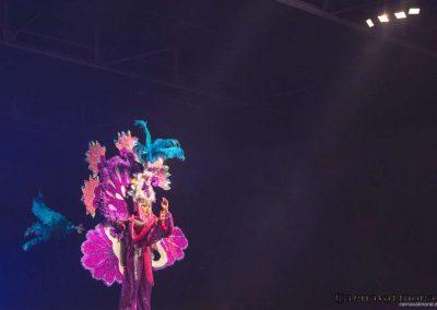 carnavalmoral-gala-2017-059