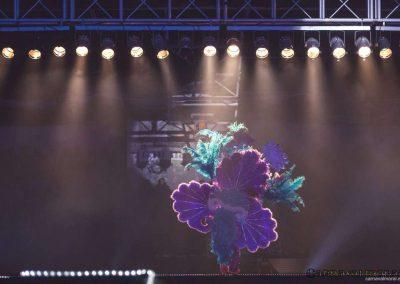 carnavalmoral-gala-2017-063