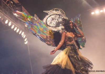 carnavalmoral-gala-2017-116