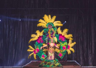 carnavalmoral-gala-2017-122