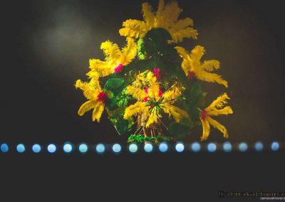 carnavalmoral-gala-2017-123