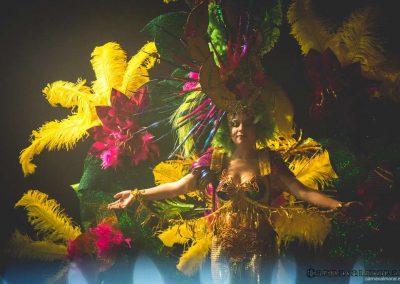 carnavalmoral-gala-2017-124