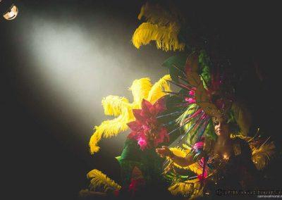 carnavalmoral-gala-2017-126