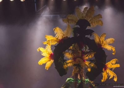 carnavalmoral-gala-2017-127