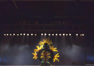 carnavalmoral-gala-2017-128