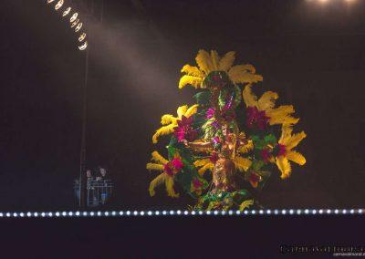carnavalmoral-gala-2017-132
