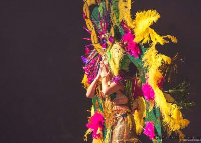 carnavalmoral-gala-2017-135