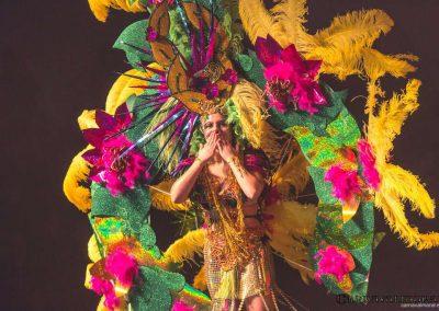 carnavalmoral-gala-2017-136