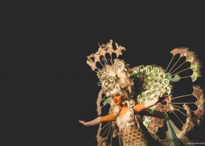 carnavalmoral-gala-2017-138