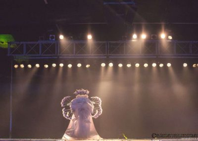 carnavalmoral-gala-2017-145