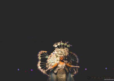 carnavalmoral-gala-2017-153