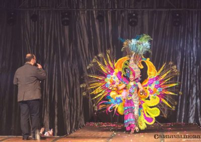 carnavalmoral-gala-2017-170