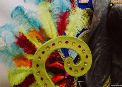 gala-reinas-damas-carnavalmoral-2019-003