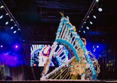 gala-reinas-damas-carnavalmoral-2019-058