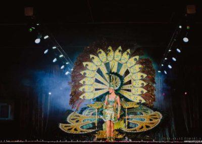 gala-reinas-damas-carnavalmoral-2019-069